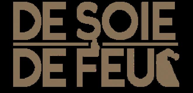 dsdf-logo2-300x145