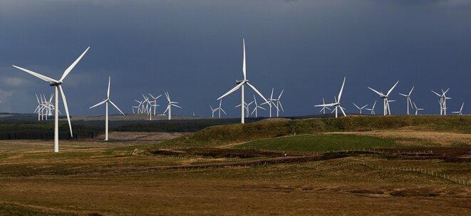 Parc éolien de Whitelee, Écosse, en 2009 © Reuters/David Moir