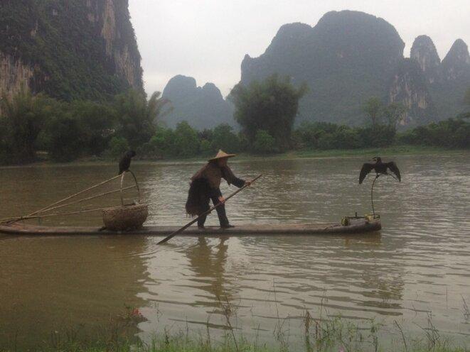 Pêcheur au Cormoran en Chine © Inconnu