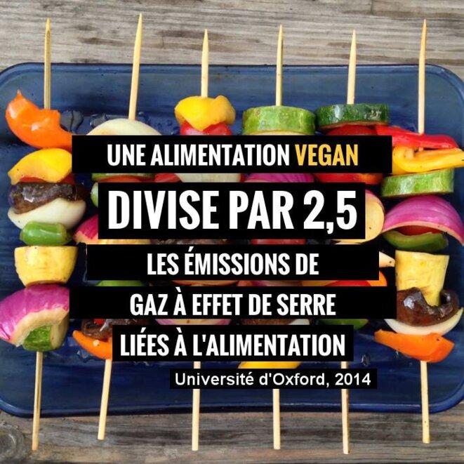 ges-vegan