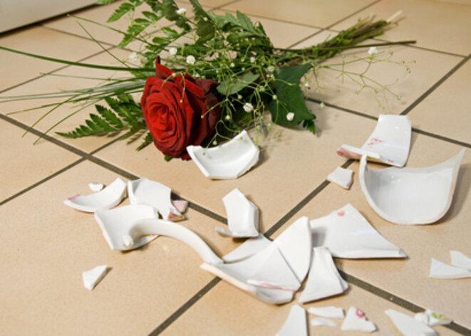 rose-with-broken-vase