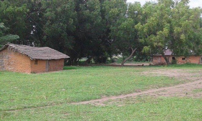 freddy-mulongo-masimanimba32-2