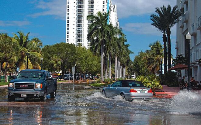 Miami, octobre 2010 © Steve Rothaus, Miami Herald