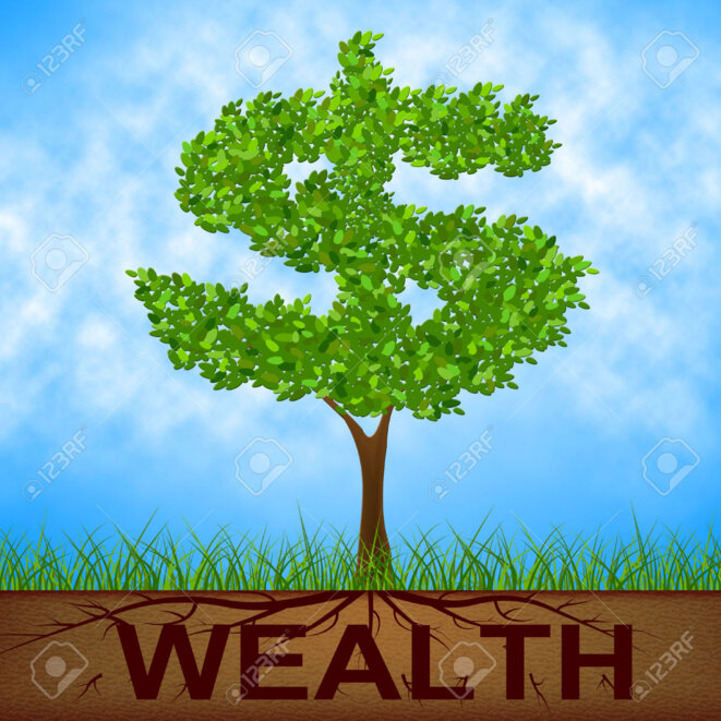 33351965-wealth-tree-representing-banking-dollars-and-nature-stock-photo