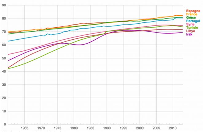 Pays dont l'espérance de vie a diminué entre 2005 et 2015 (OMS et Banque Mondiale) © Wikimedecine