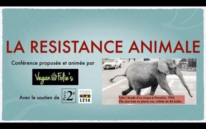 resistance-animale