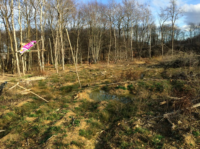 A part of the Chambarans forest that has already been cleared; it has now been occupied by opponents to the Center Parcs scheme. (JL).