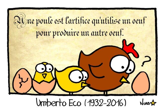 L'œuf et la poule (Umberto Eco) © Norb
