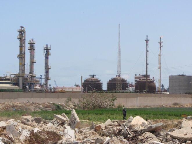 Le degré de la misère de l'environnement, ce sont peut-être aussi ces habitants des environ de la zone industrielle, au chômage, qui cultivent leur potager sur des parcelles, situées en plein milieu de la zone industrielle, que le groupe chimique tunisien leur a accordées en dédommagement.