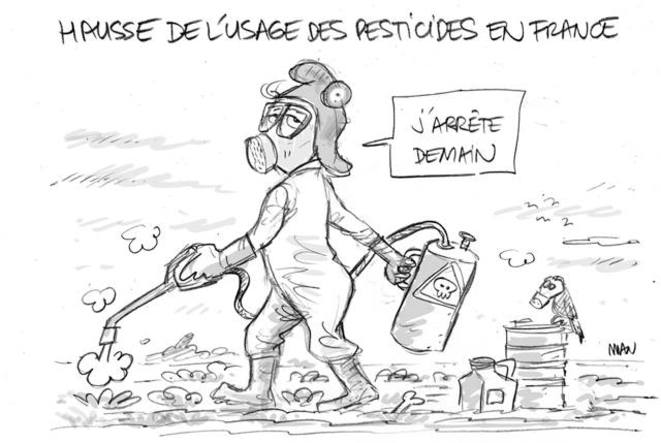 hausse-de-l-usage-des-pesticides-en-france