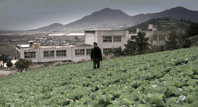 "Photogramme de ""Memories of Murder"", de Bong Joon-ho (2003)."