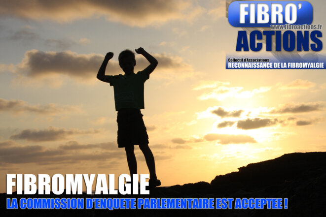 fibromyalgie - commission d'enquête parlementaire validée © Collectif d'Associations Fibro'Actions