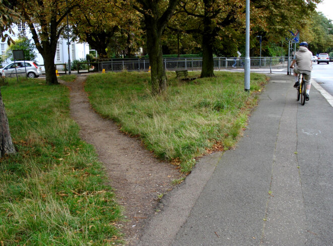 A desire path in the wild. © Flickr