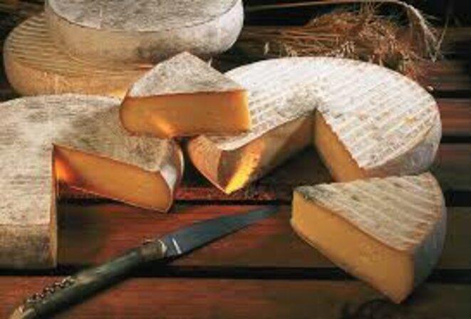 Accord de libre échange avec le Canada : l'Union européenne sacrifie ses fromages!