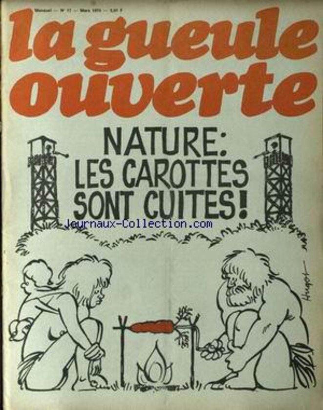 gueule-ouverte-carottes