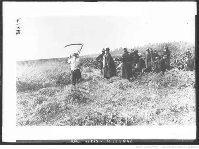 Paysans et soldats belges à Diest, Belgique, 1914. Source: www.gallica.fr