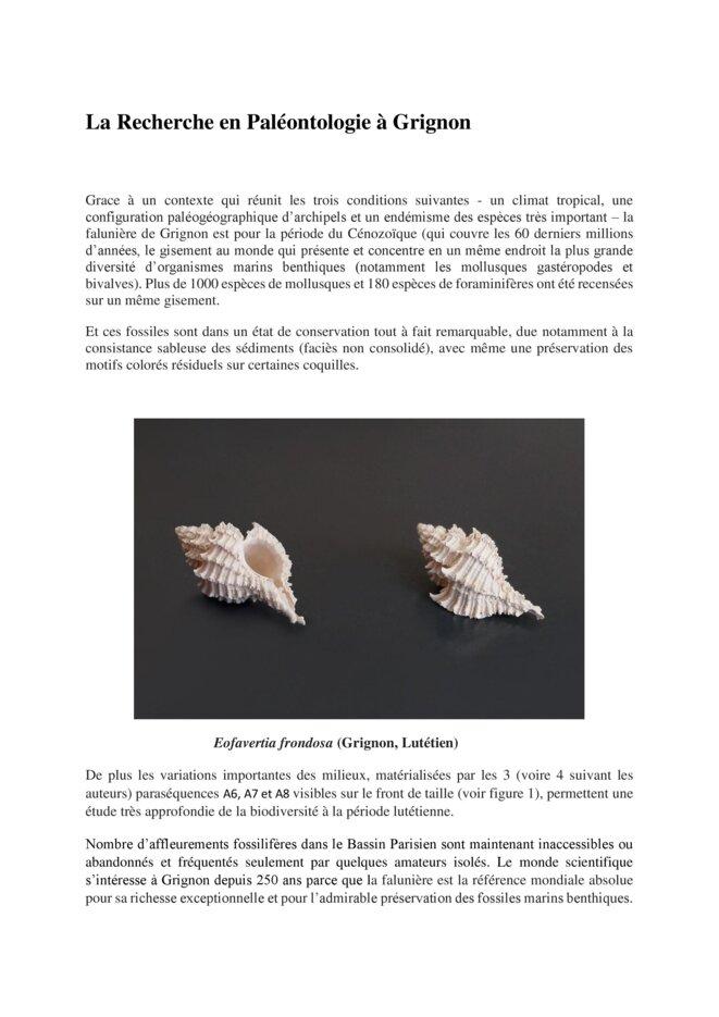 la-recherche-en-paleontologie-a-grignon-1-page-001