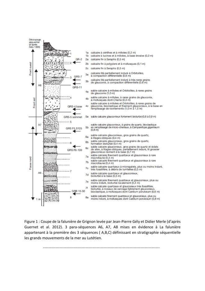 la-recherche-en-paleontologie-a-grignon-1-page-003