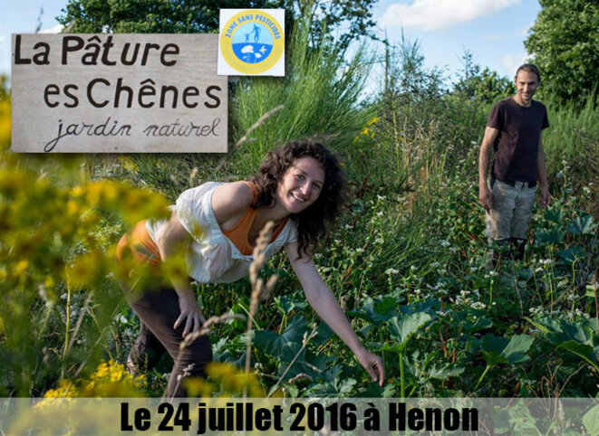 La pâture es chênes © AlterTour