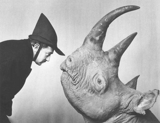 Salvador Dalí With rhino (1956) © Philippe Halsman
