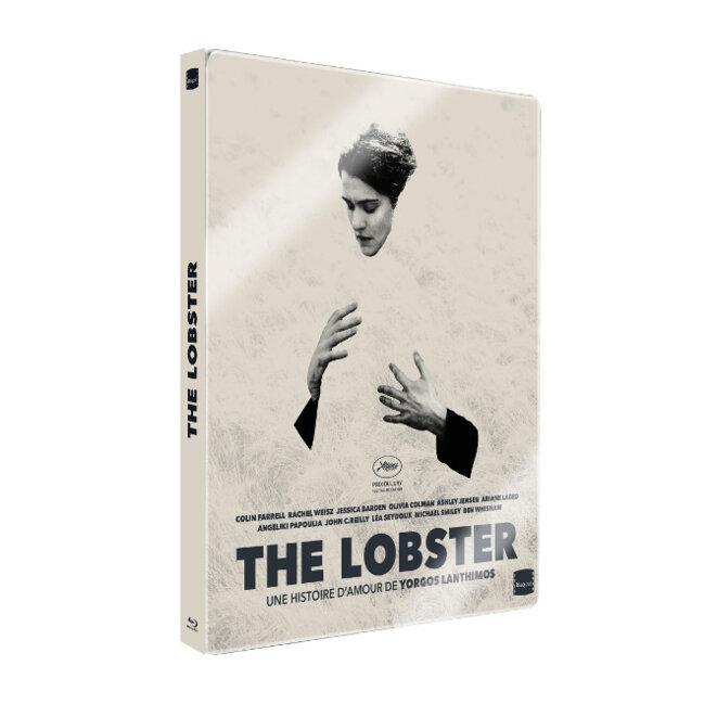 dvd-lobster
