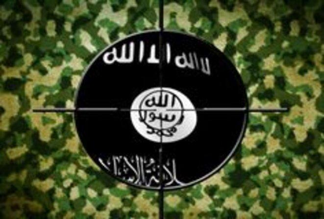 Drapeau ISIS ciblé © Inconnu