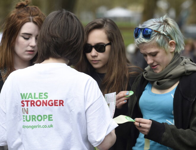 Campagne contre le Brexit dans un parc de Cardiff, en avril 2016. © Reuters
