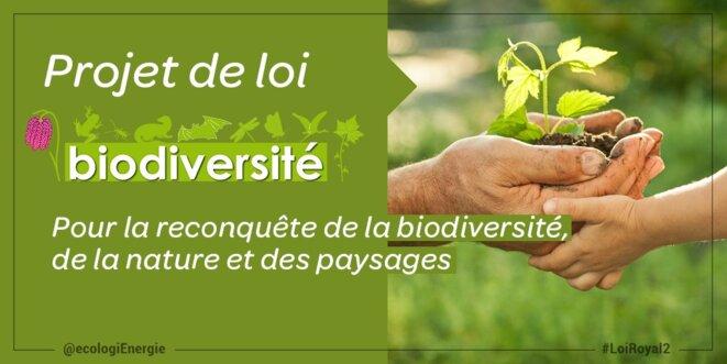 logo-loi-biodiversite