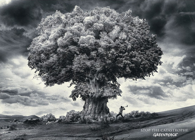 greenpeace-explosion-atomique-2