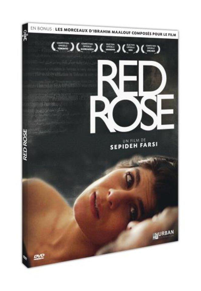 dvd-red-rose