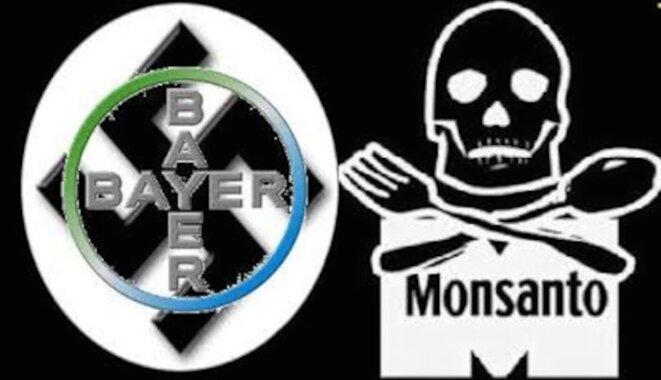bayer-monsanto-nazi-et-tueur