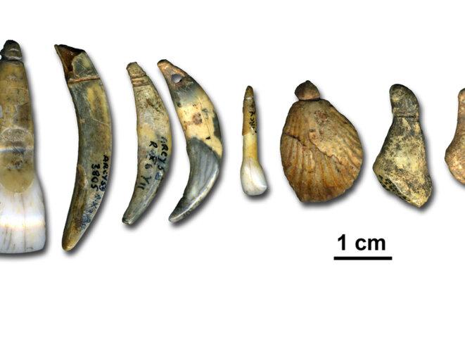 Objets retrouvés dans la Grotte du Renne, attribués aux Néandertaliens © Dr. Marian Vanheren