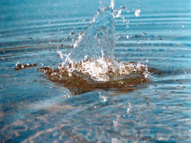 images-duckduckgo-com-2