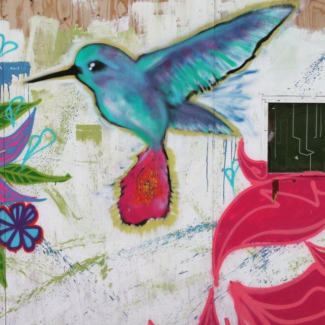 Aux environs du CAMIE (centre d'accueil pour mineurs isolés étrangers ouvert en juillet par MSF au nord de la jungle), l'espace du Hummingbird Project, septembre 2016.