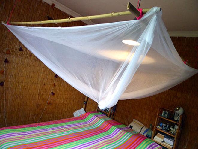 finis les moustiques le club de mediapart. Black Bedroom Furniture Sets. Home Design Ideas