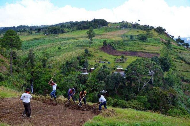 Travail agricole dans les hauts plateaux © Visual Research