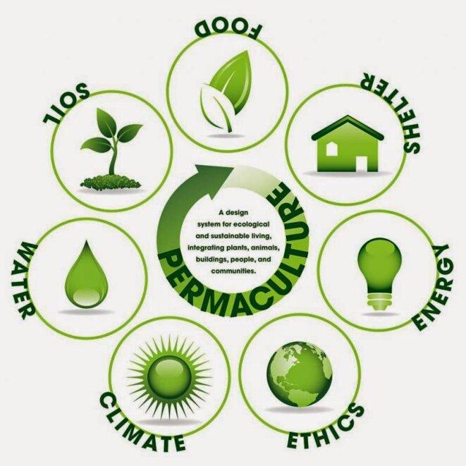 permaculture-image-copie