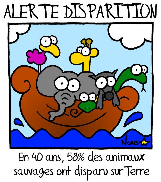 Biodiversité: alerte disparition! © Norb