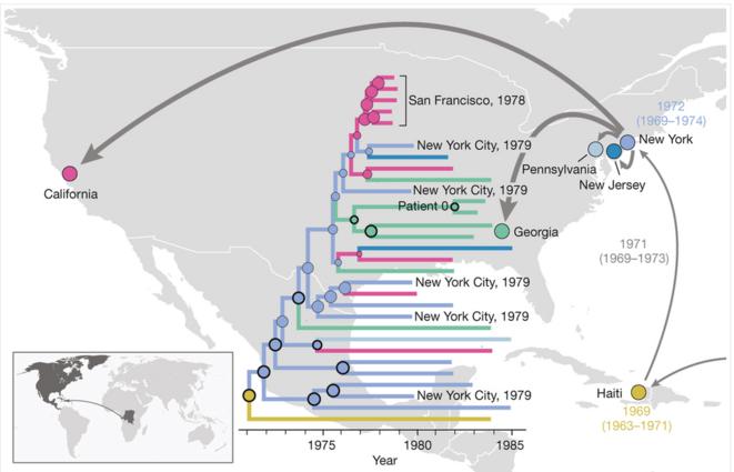 Le parcours du virus du sida d'Afrique en Amérique du nord, reconstitué par l'équipe de Worobey © Nature