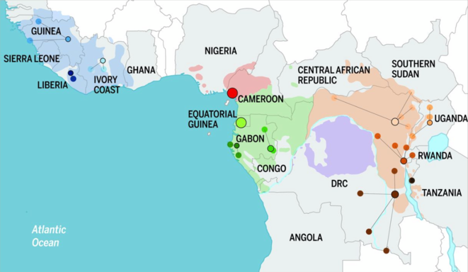 Distribution géographique des populations de chimpanzés © Science