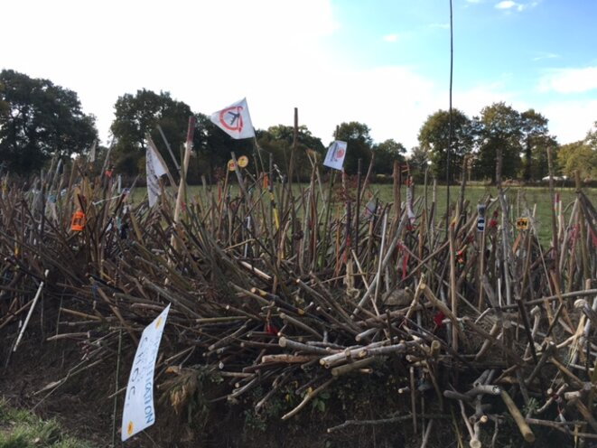 Wall of defence: thousands of opponents' sticks line the boundary of the new airport site. (JL)