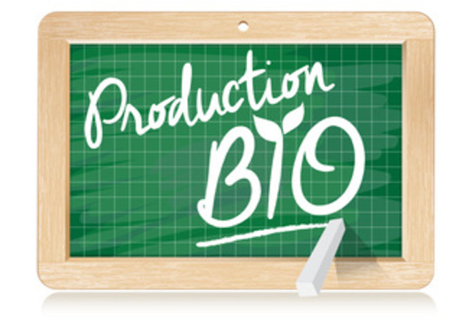 production-bio-1