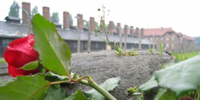 Auschwitz - il ne faut rien oublier. Foto: (c) C. Puisney / Wikimedia Commons / CC-BY-SA 3.0