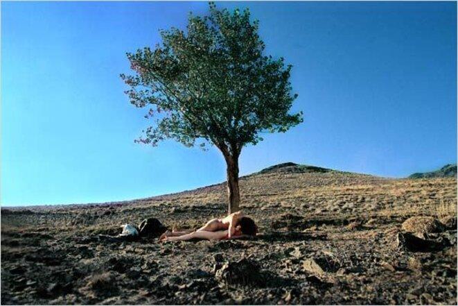 """""""Tabous"""" de Mitra Farahani © Les Films du Paradoxe"""