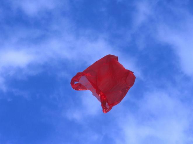 Dennis Adams, Patriot : la série « Airborne », 2002, C-Print contrecollé sur aluminium. Prêt du Centre national des arts plastiques, Paris, inv. FNAC 03.241. © Dennis Adams / CNAP / Courtesy Galerie Gabrielle Maubrie.