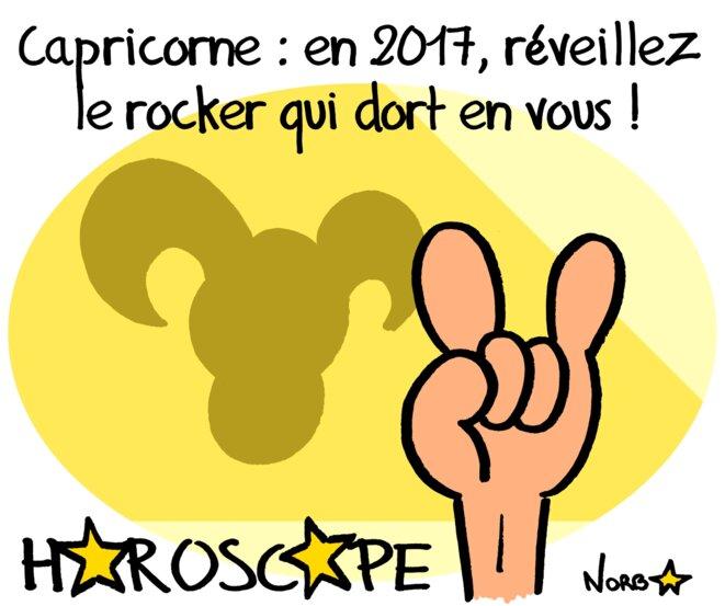 Horoscope 2017 : capricorne © Norb