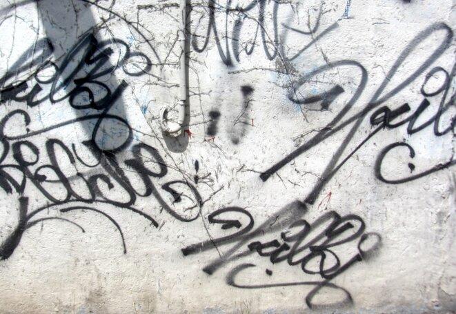 Signatures © pol