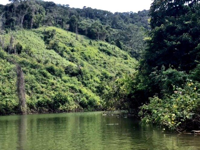 Le Noeud du Paramillo, réserve naturelle et zone de cultures illicites, entre les départements de Córdoba et Antioquia en Colombie.