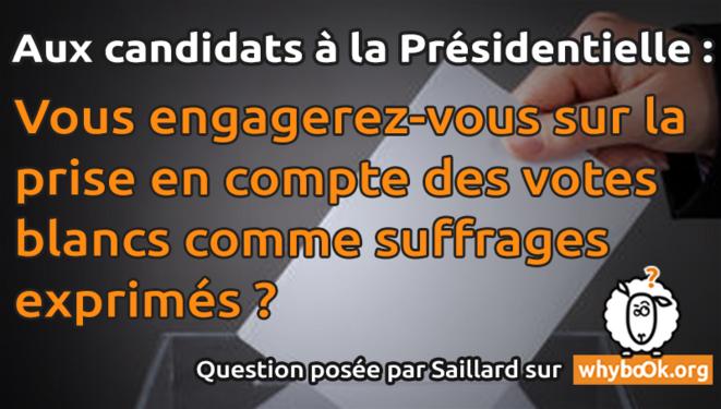 banniere-fb-vote-blanc