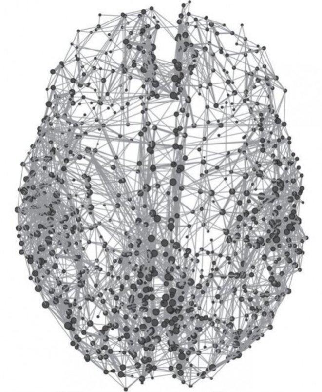 Représentation du connectome humain - RoyalSocietyPublishing.org/Olaf Sporns